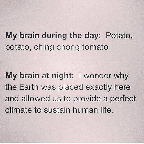 Potato potato ching chong tomato urban dictionary
